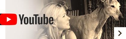 Tiere-Verstehen.com auf YouTube