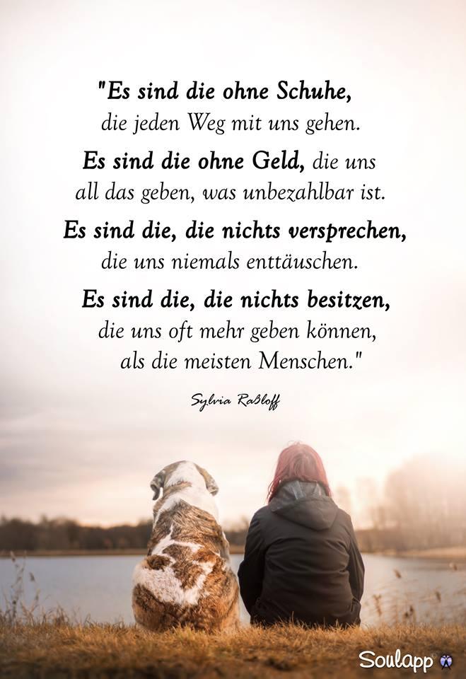 Es sind die ohne Schuhe… – Tiere-Verstehen.com ...